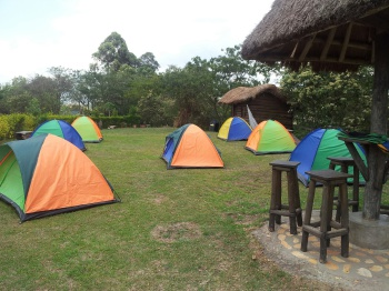 Campsite Area at Ecolodge Uganda Campsite